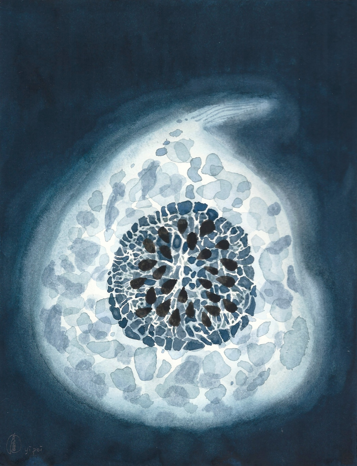 Luminous Pumpkin, watercolour on paper, 18x23cm, 2018.